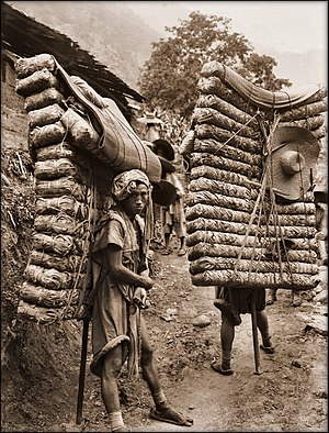 "Tea brick - Porters laden with ""brick tea"" in a 1908 photo by Ernest Henry ""Chinese"" Wilson, an explorer botanist."