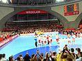 Mistrzostwa Europy w Piłce Ręcznej Mężczyzn 2016, Wrocław(4).jpg