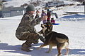 Mongolian Armed Forces Lt. Ichinkhorloo Erdene Ochir, a dentist, plays with dogs treated by veterinarians in Golovin, Alaska, April 15, 2012, during exercise Arctic Care 2012 120415-F-ZH346-004.jpg