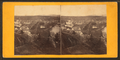 Montpelier, Vermont, from Robert N. Dennis collection of stereoscopic views.png