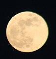 Moon 1-10-09.jpg