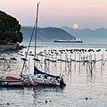 Moonrise - Portovenere, La Spezia, Italy - August 29, 2015 - panoramio (1).jpg