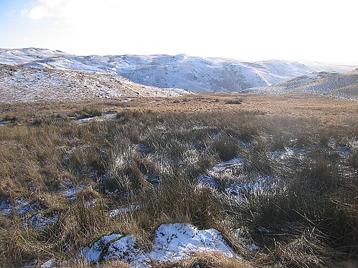 Moorland south of the Teifi pools - geograph.org.uk - 1706396