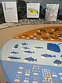 Morinomiya shell mound exhibit - Osaka Museum of Natural History - DSC07756.JPG