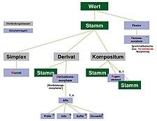 Structura verbi Theodiscae.