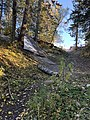 Mountain bike downhill 01.jpg