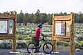 Mountain biking at Cline Buttes (30365200861).jpg