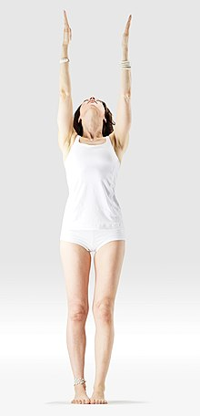 220px Mr yoga upward salute 1 yoga asanas Liste des exercices et position à pratiquer