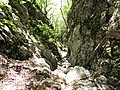 Mudna dol - panoramio (6).jpg