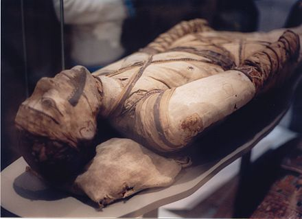 Egyptian mummy in the British Museum - tubercular decay has been found in the spine. Mummy at British Museum.jpg