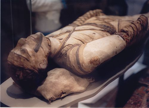 古代エジプトで結核で死亡したと思われる人のミイラ(大英博物館)