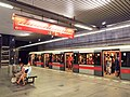 Muzeum metro station.jpg