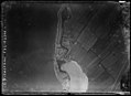 NIMH - 2011 - 0904 - Aerial photograph of Fort Diemerdam, The Netherlands - 1920 - 1940.jpg