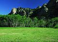 NRCSCO01089 - Colorado (1565)(NRCS Photo Gallery).jpg