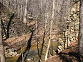 Nancy Rhodes Creek at Pump Station Access Eno River SP NC 4567 (4394061280).jpg