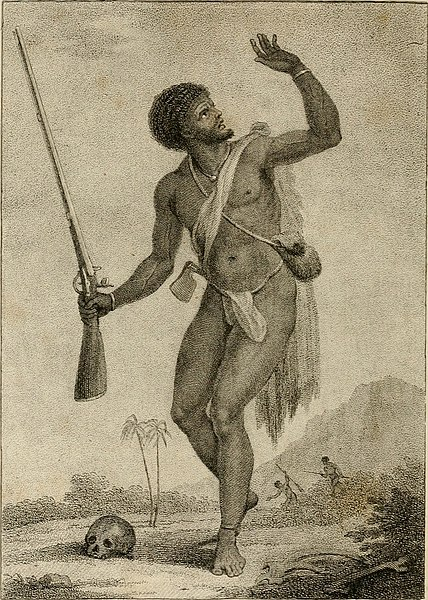 File:Narrative, of a five years' expedition, against the revolted negroes of Surinam, in Guiana, on the wild coast of South America, from the year 1772, to 1777 - elucidating the history of that country, (14727774496).jpg