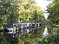 Narrowboats and houseboats on the Basingstoke Canal (2) - geograph.org.uk - 1067991.jpg