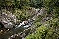 Natsui River 07.jpg