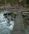 Nature reserve Skryjská jezírka (3).jpg