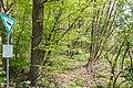 Naturschutzgebiet Königsdorfer Forst-7286.jpg