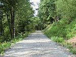 Nebenbahn Wennemen-Finnentrop (5829810782).jpg