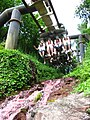 Nemesis at Alton Towers 232 (4756109419).jpg