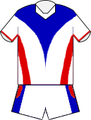 Newcastle Knights Away Jersey 2014.png