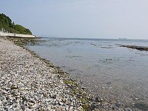 Newton's Cove - Shore of Newton's Cove