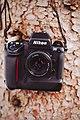 Nikon F5 (146435541).jpeg