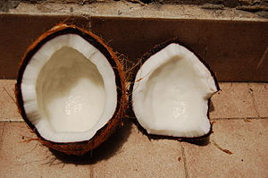 English: Coconut Français : Noix de coco