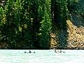 North Cascades National Park (9292801698).jpg