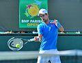 Novak Djokovic (16218600833).jpg