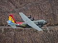 Number 47 Squadron Centenary Tail Art (12).jpg
