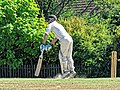Nuthurst CC v. Henfield CC at Mannings Heath, West Sussex, England 010.jpg