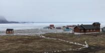 Nuugaatsiaq.png