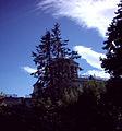 Observatorio Astronomico Madrid.jpg