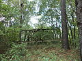 Old Withlacoochee Rail Bridge from Madison County 03.JPG