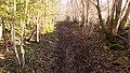 Old dirt road - panoramio.jpg
