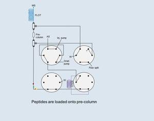 File:Open-Tubular-Lab-On-ColumnMass-Spectrometry-for-Targeted-Proteomics-of-Nanogram-Sample-Amounts-pone.0106881.s003.ogv