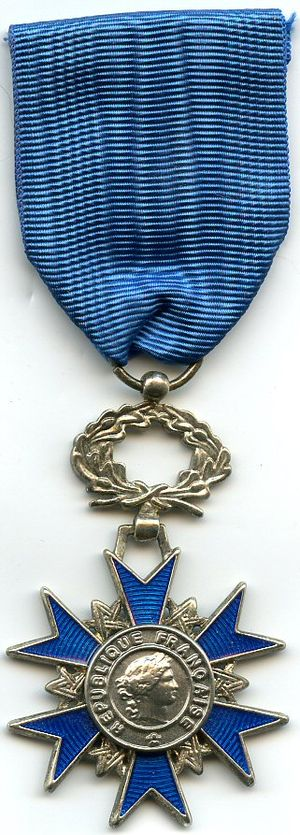 Orders, decorations, and medals of France - Image: Ordre national du merite chevalier FRANCE