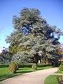 Orléans - parc Pasteur (22).jpg