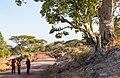 Oromia IMG 5205 Ethiopia (39633430171).jpg