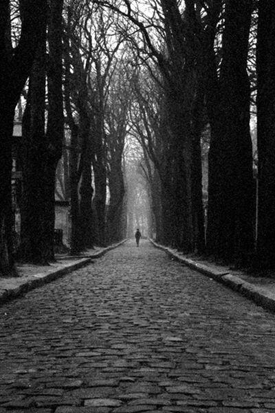 File:Père-Lachaise avenue fog.jpg