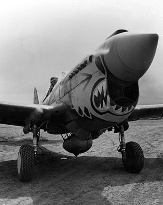 343d Wing - 11th Fighter Squadron P-40 in Alaska, 1943