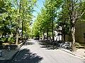 P1020834.JPG - panoramio.jpg