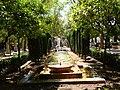 PALMA de MALLORCA, AB-075.jpg