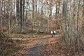 PERT Wilderness Trail.jpg