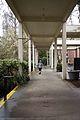 Pacific University-2.jpg