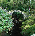 Packhorse Bridge - geograph.org.uk - 1496617.jpg