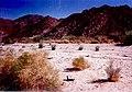 Palm Springs Desert Museum March 1996.jpg